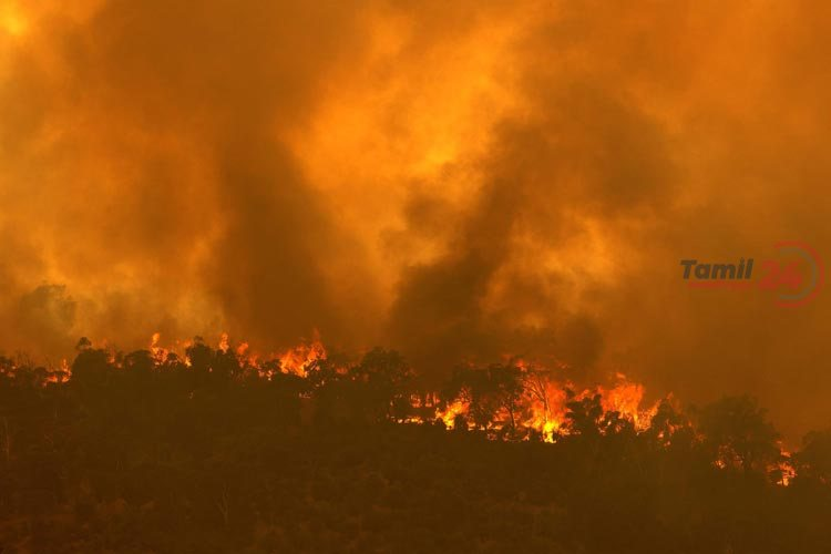 Western Australia Perth fire 3 AFP Photo 1